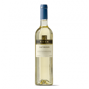 Sauvignon Blanc 2013 of Fiuza & Bright from Portugal