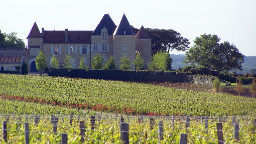 Chateau D Yquem