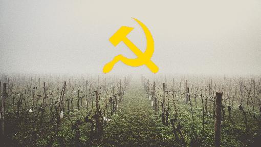 Soviet-Union und Wein