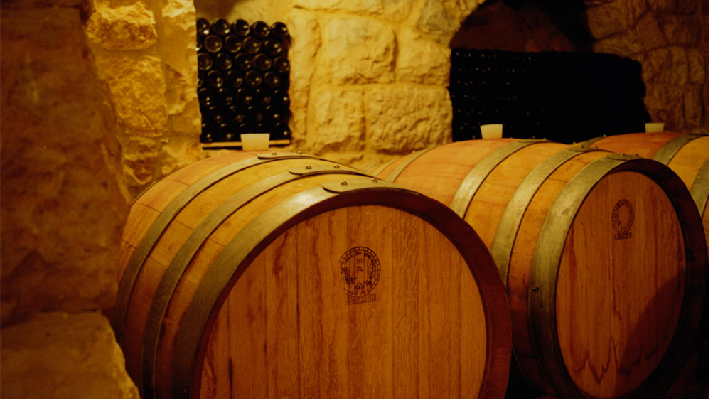 Wine cellar of Chateau Fakra