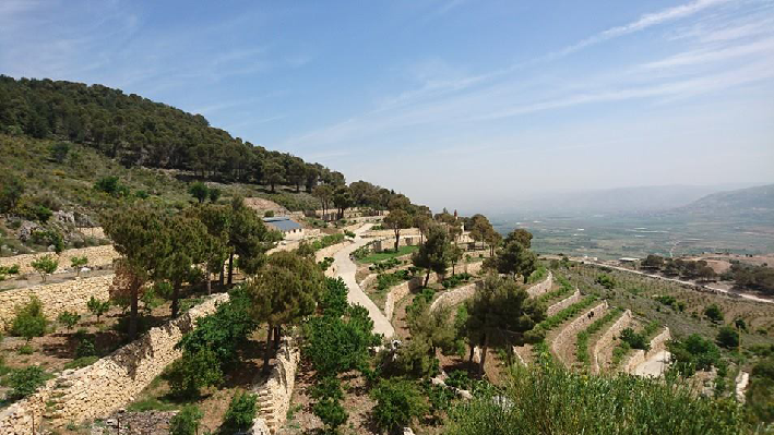 Winery Chateau Qanafar