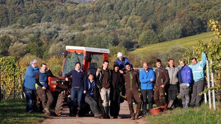 Team von Gies-Düppel