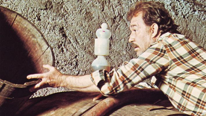 Ugo Tognazzi in his wine cellar