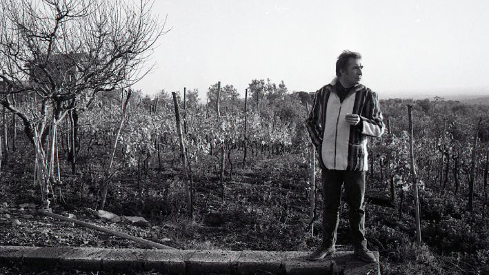 Ugo Tognazzi in the vineyards