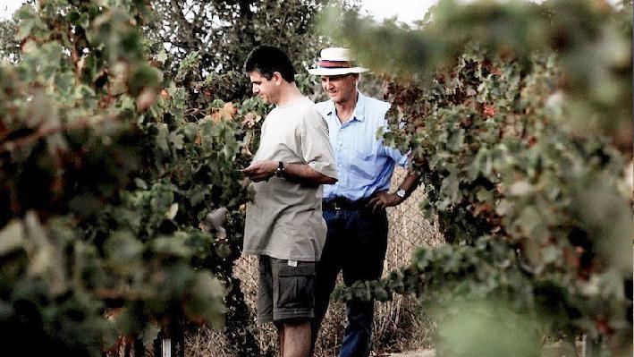 Fadi Geara in the vineyard