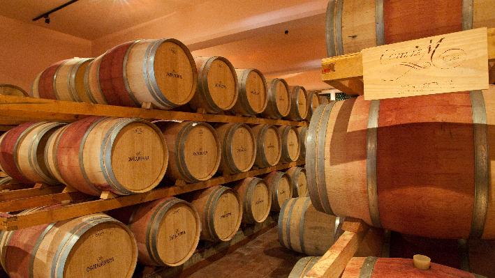 Wine cellar of Chateau Kefraya