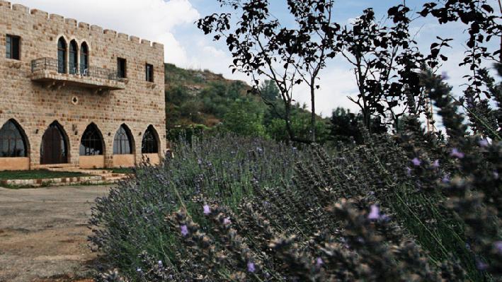 Winery Chateau Cana