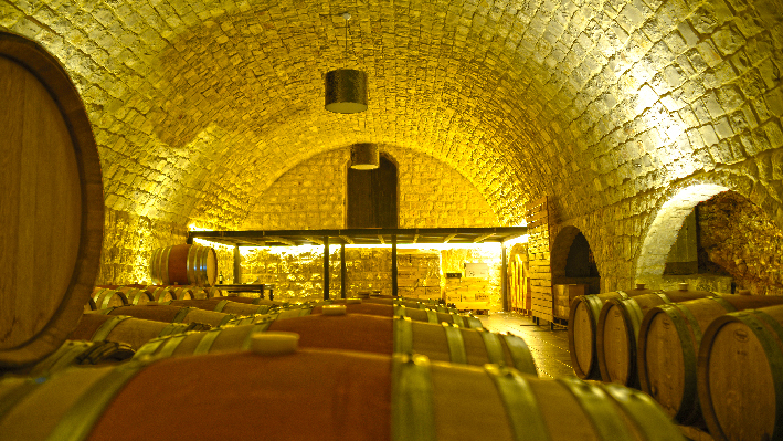 Wine cellar of Domaine de Baal
